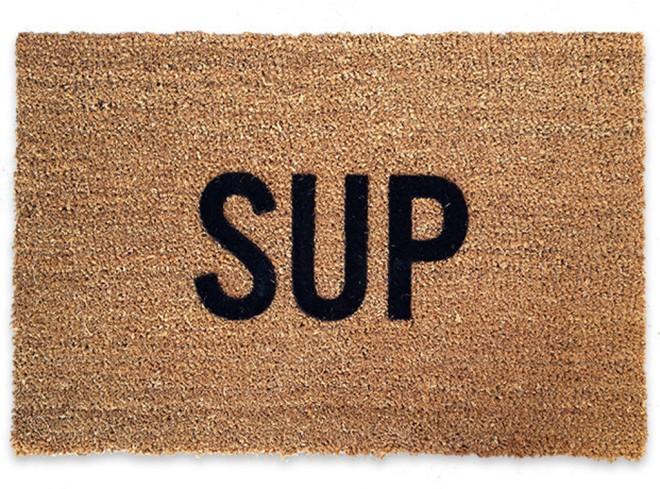 rs_1024x759-131118133832-634.goop-gift-guide-sup-doormat