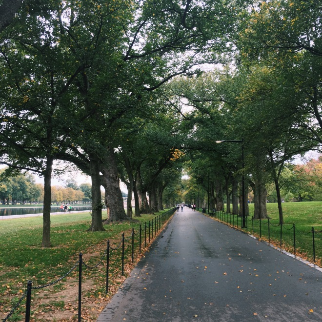 Getting in my own Sunday run in across the National Mall.